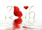 bonne-annee-2016-celibest