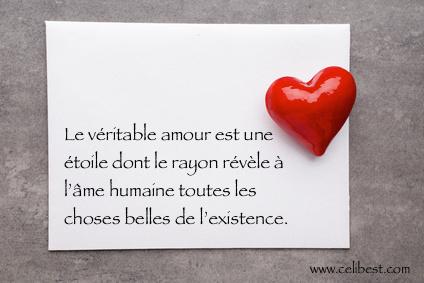10 Citations De Noel Pour Les Amoureux Celibest