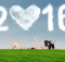 celibataire-2016-resolutions-celibest