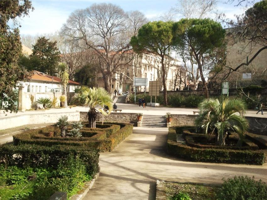 Montpellier le jardin des plantes le mag des c libataires - Jardin d essence montpellier ...